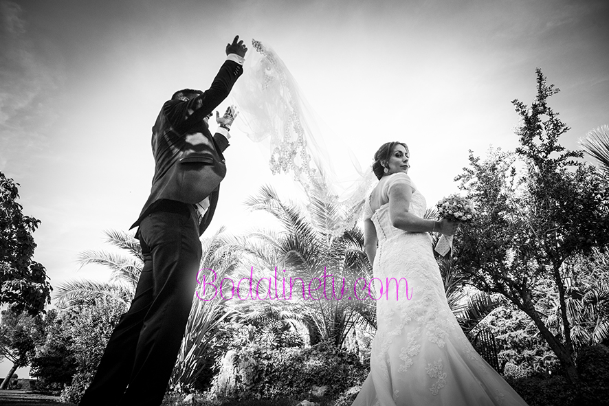 Bodalinetv - the wedding present photography